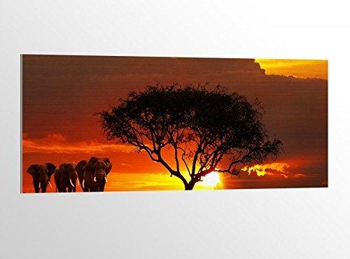alu-dibond África Sabana Elefantes Safari 100x40cm Imagen en aluminio aludibond UV impresión...