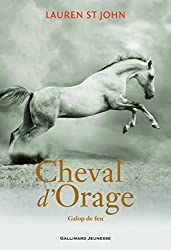 Cheval d'Orage (Tome 3-Galop de feu)
