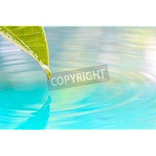 adrium Poster-Bild 30 x 20 cm:Drop of water from leaf background ., Bild auf Poster