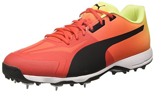 Puma-Mens-Cricket-Shoes