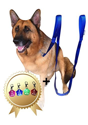 lead-dog-25m-blue-dog-leads-long-double-handle-lead-for-large-dogs-bonus-dog-tag-extra-long-dog-lead