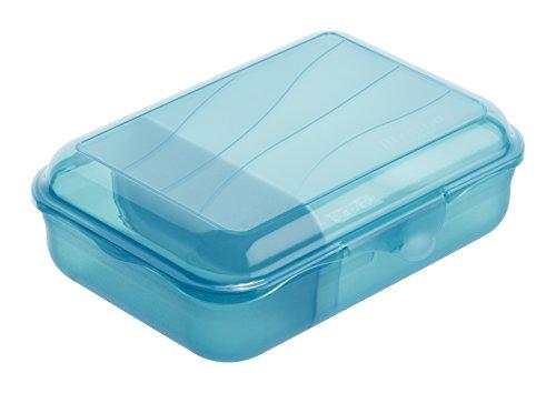 Rotho 1111806113 Vesperdose mit herausnehmbarer Trennwand (Größe: S) 0.9 L Inhalt, BPA-frei - Hergestellt in Schweiz, Kunststoff, aqua blau, 18 x 13 x 6 cm