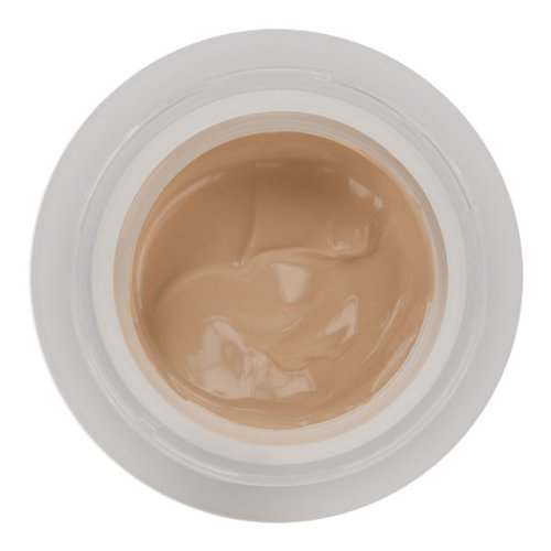 Ceramide Plump Perfect Makeup SPF15 by Elizabeth Arden Porcelain 02