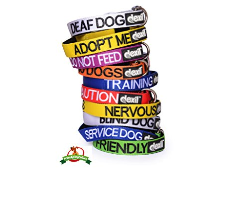 DO-NOT-PET-Red-Colour-Coded-S-M-L-XL-Neoprene-Padded-Dog-Collar-PREVENTS-Accidents-By-Warning-Others-of-Your-Dog-in-Advance-S-M