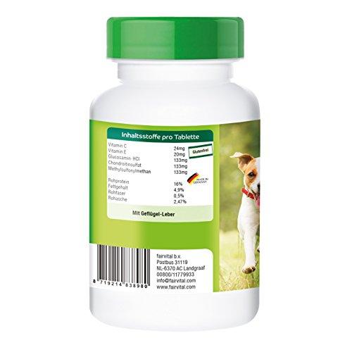 Vetipur Glucosamin Plus, enthält Glucosamin, Chondroitin, MSM, Vitamin C und Vitamin E, Futterergänzung für Hunde, 90 Tabletten