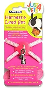 Ancol- Rabbit and Guinea Pig Harness & Lead Set