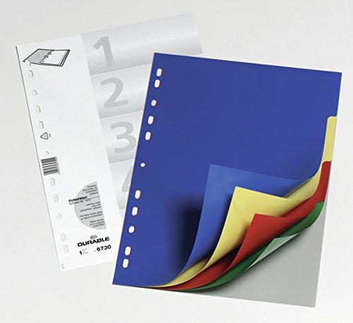 DURABLE Hunke & Jochheim Register, PP, blanko, farbige Taben, DIN A4, 210/220 x 297 mm, 5 Blatt - 2