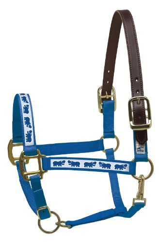 perris-leather-horse-royal-blue-with-hippos-nylon-ribbon-safety-halter-by-perris-leather