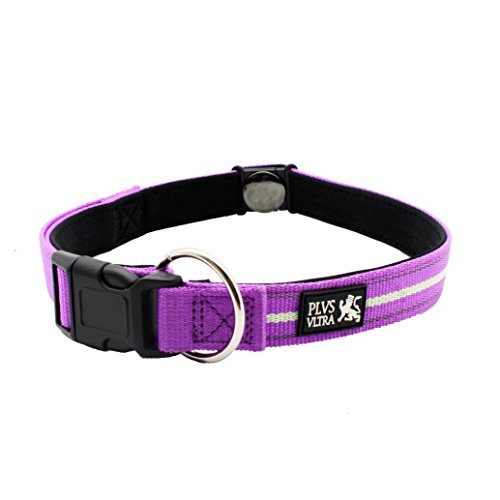 Magnetic-Large-Dog-Collar-with-high-viz-strips-for-night-visibility-soft-padding-for-comfort-by-Plus-Ultra-40cm-to-55cm