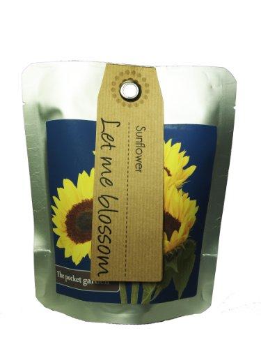 Canova Garden - Kit per coltivazione girasoli - Fragola Grow Kit