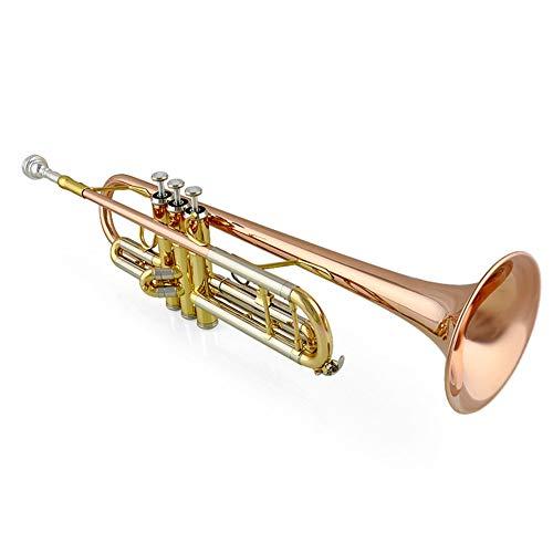 LVSSY-Brass Bb Trompete Mit Pro Case Care Kit Gold Keine Notwendigkeit Zu Stimmen Student Anfänger Mit Hard Case