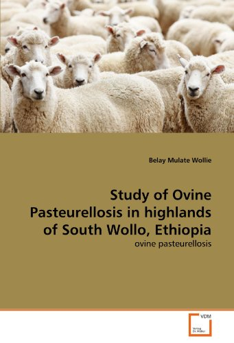 Study of Ovine Pasteurellosis in highlands of South Wollo, Ethiopia por Belay Mulate Wollie