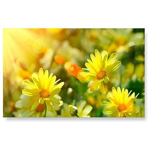 """LanaKK - Küchenrückwand - Glasbild\""""Daisies\"""" Blumen & Natur Edler Glas-Kunstdruck Hinter 6 mm starkem Sicherheitsglas - Gelb in 90 x 60 cm"""