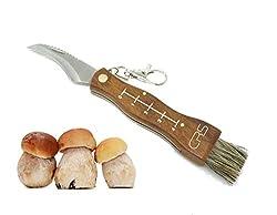 Polizeigeprüftes Pilzmesser mit Bürste / Pinsel zum aufklappen mit Lineal aus rostfreiem Stahl. Kleines Taschenmesser für Outdoor u. Camping | Klappmesser mit gebogener Klinge