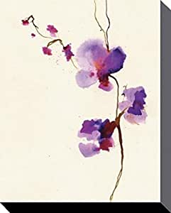 Flowers Stretched Canvas Print - Velvet Orchid, Summer Thornton (20 x 16 inches)