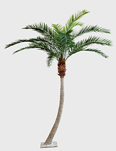 2 x Künstliche Phönix Palme Harper mit gebogenem Stamm, grün, Deluxe, 440 cm – Kunstpalme/Deko Palme
