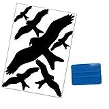 Folius Vogel Aufkleber gegen Vogelschlag, Vogelschutz & Fensterschutz, 6 Vogelschreck Aufkleber + 3M Rakel