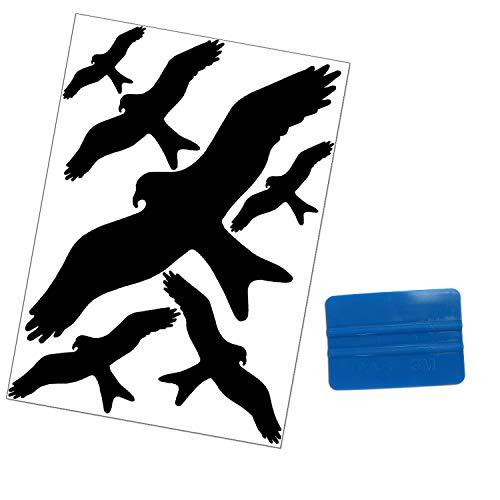 Folius Vogel Aufkleber gegen Vogelschlag, Vogelschutz & Fensterschutz, 6 Vogelschreck Aufkleber + 3M Rakel -