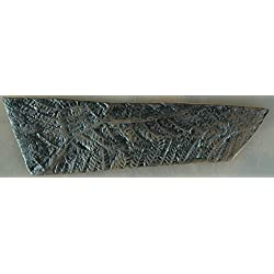 Fossile Replik Eines Farns; Farn, Lebendes Fossil, Fossilien, Pflanze, Pflanzen, Abdruck, Replikat, Nachbildung Fliese Fliesen