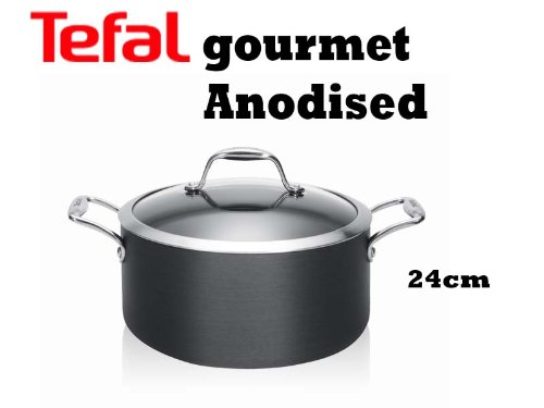 Tefal Gourmet Hard Anodised Stewpot With Glass Lid 24 cm E8964644