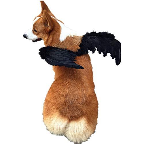TAIMEI Haustierkostüm Hund Katze Flügel Zubehör Engel Flügel Requisite Rucksack Tiere Lustig DIY Mantel Weihnachten Kleidung (Engel Flügel Kostüm Für Hunde)