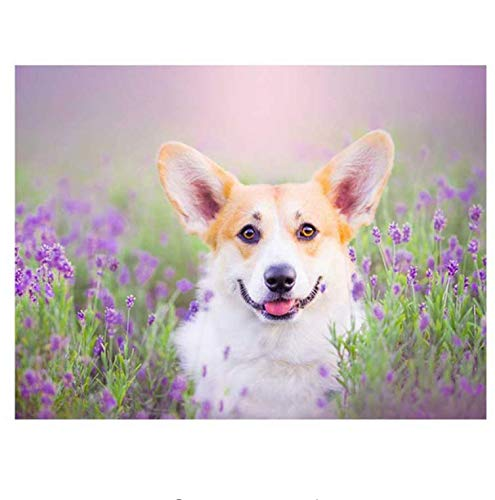 Lovefyl DIY Pet Foto Custome Diamant Stickerei Welsh Corgi Hund Diamant Malerei Kreuzstich Quadrat Runde Mosaik Hand 50X60CM
