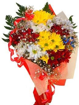 Ramo de flores naturales a domicilio de margaritas con adornos vegetales a juego, Son flores frescas de alta calidad.