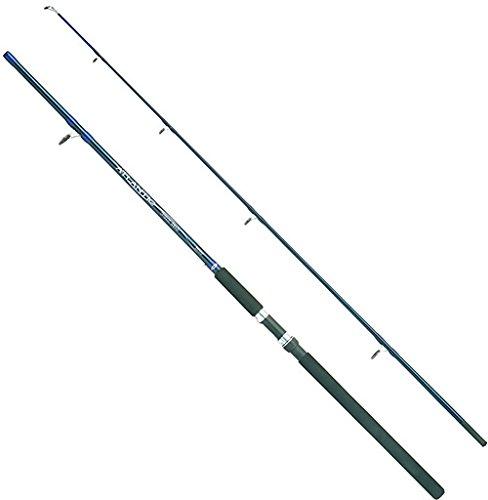 Balzer Atlantic Pilk-Rute 2,40 m 60-180 g