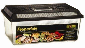 Exo Terra Faunarium, flach klein