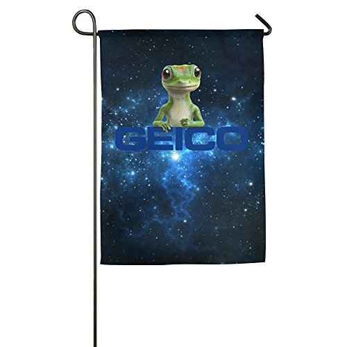 geico-400-popular-flags-by-lycaq
