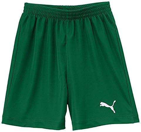Puma Jungen Fußballshorts Velize, power Green, 152, 701945 05