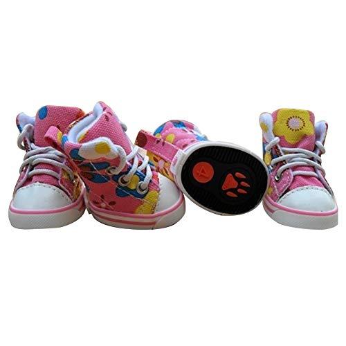 Yililay Zapatos Lindos de la Lona del Perro Calzado del...