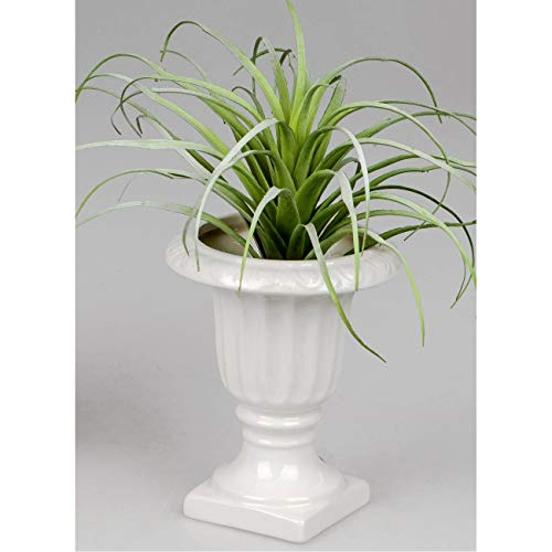 CREAFLOR HOME Deko Vase AMPHORE H. 15cm D. 13cm weiß Keramik Formano