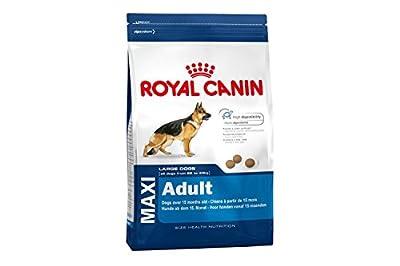 Royal Canin Maxi Adult 26 Dry Large Breed Dog Food