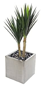 Closer to Nature Artificiale 4ft Yucca Plant - seta artificiale Impianti e Albero Gamma