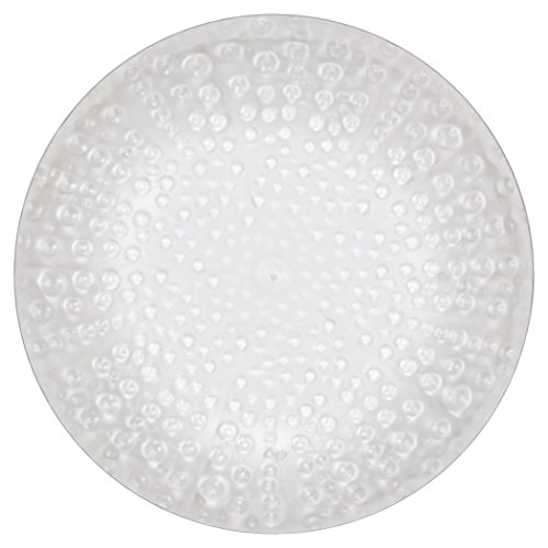 MADHOUSE by Michael Aram 12-Count Clear Luncheon Plate, Coral Dessert Plate Coral