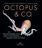 Octopus & Co.: Die faszinierende Welt der Tintenfische, Kraken und Kalmare - Roger Hanlon, Mike Vecchione, Luise Allcock
