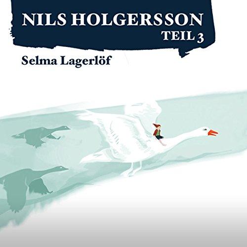 Die wunderbare Reise des kleinen Nils Holgersson mit den Wildgänsen 3