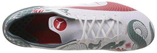 Puma Evospeed 1.3 Graphic Fg, Chaussures de football homme Blanc - Weiß (white-sea pine-high risk red 01)