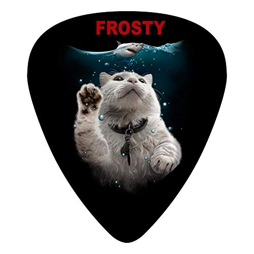 Frosty Guitar Picks Celluloid Print Girls Complete Assorted 12 Pack