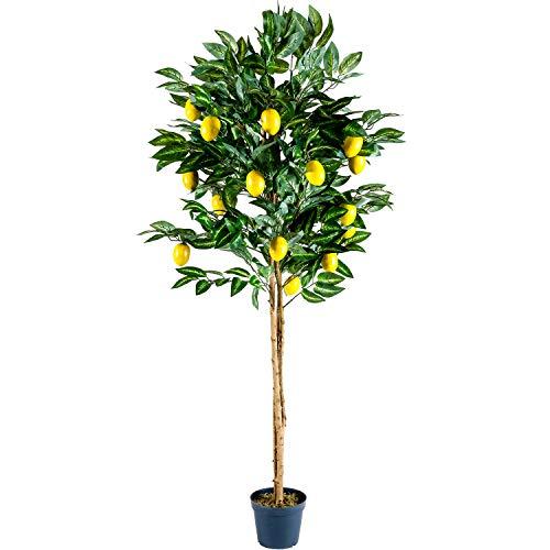 PLANTASIA® Zitronenbraum, Echtholzstamm, Kunstbaum, Kunstpflanze - 184 cm, Schadstoffgeprüft