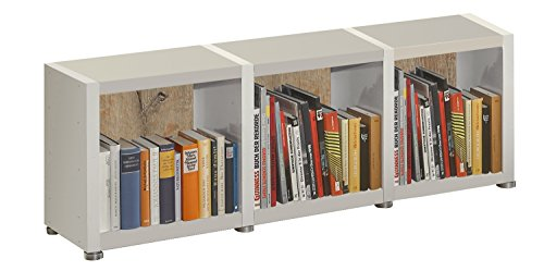 Bücherregal Raumteiler READY 13R in Weiß Seidenmatt mit Rückwand in Castle Oak