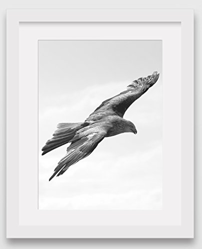 eagle-flying-print-black-and-white-sky-art-8-x-10-inches
