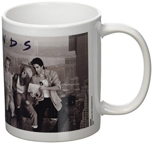 Click for larger image of Friends MG22397 1-Piece Ceramic Lunch On A Skyscraper Mug,White