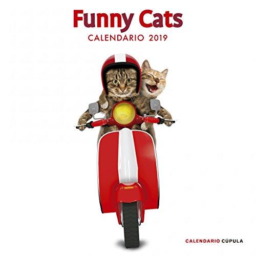 Calendario Funny Cats 2019 (Calendarios y agendas)