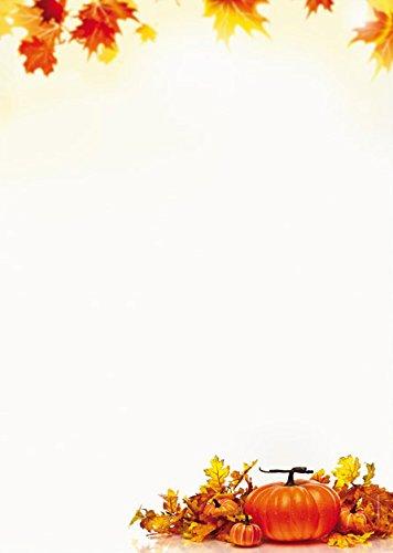 Herbst, Erntedank Briefpapier Set Kürbisse, 40-teilig mit 20 Blatt Motivpapier DIN A4, 90g/qm und 20 passenden DIN LANG-Briefumschlägen