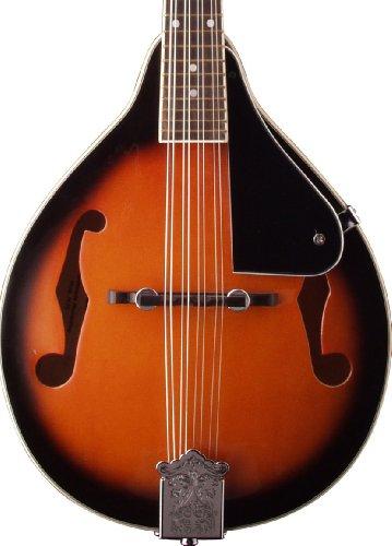 billig stagg 12996 bluegrass mandoline g nstig shoppen. Black Bedroom Furniture Sets. Home Design Ideas