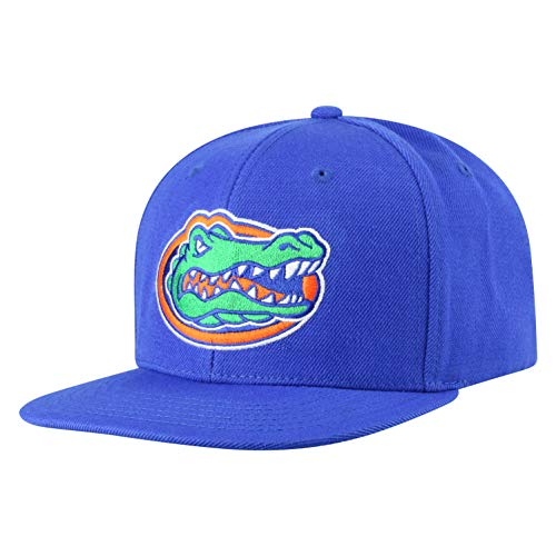 (Top of the World NCAA Florida Gators Men's Flat Brim Snap Back Team Icon Hat, Royal)