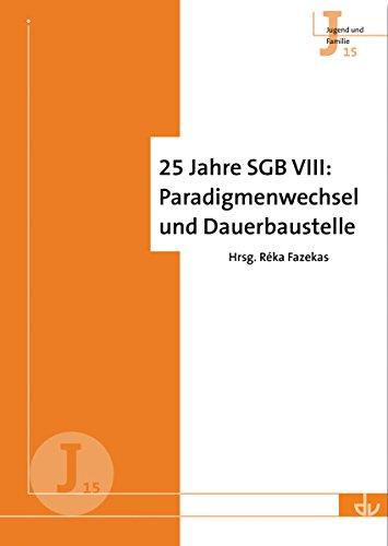 25 Jahre SGB VIII: Paradigmenwechsel und Dauerbaustelle (Jugend und Familie 15)