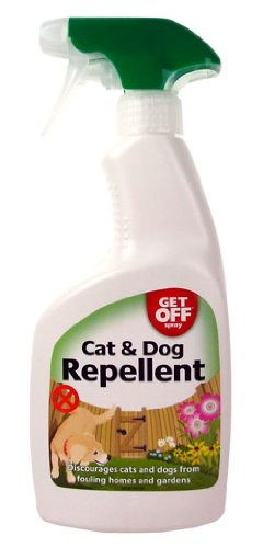 best way to remove cat urine smell